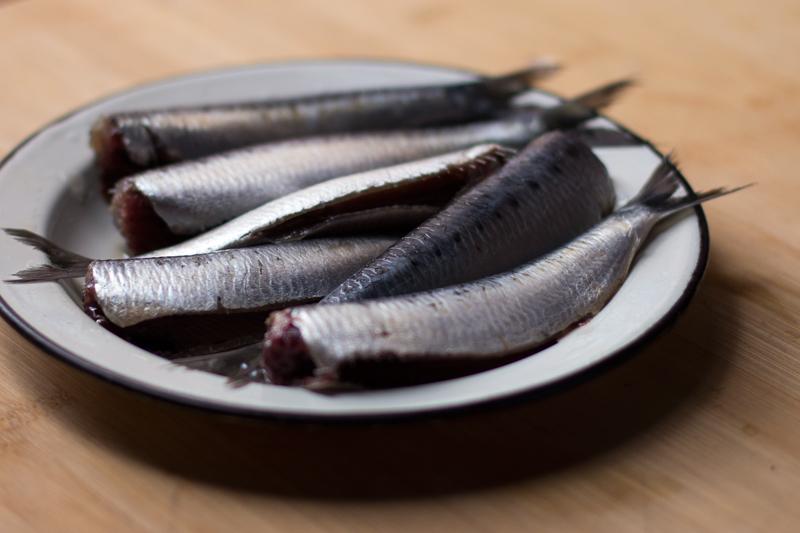 sardinas frescas